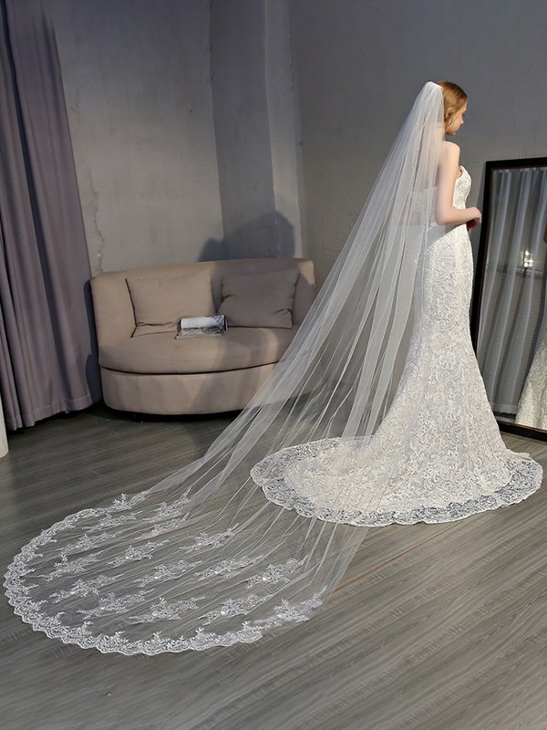 Gorgeous Tulle With Lace Long Wedding Veils